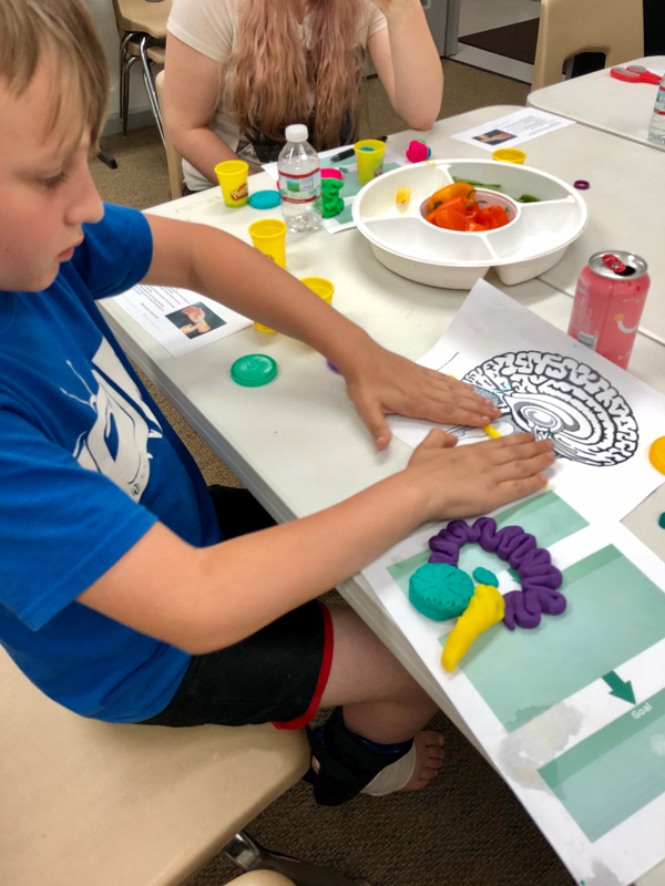 Youth participant working on his play-doh model of the brain.
