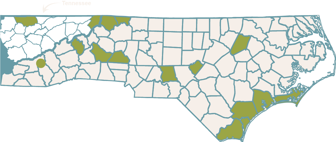 EYFP Participating Counties Map